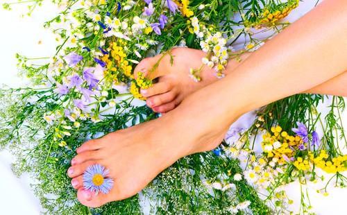 Ноги на полевых цветах и траве